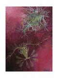 Painting of Zooplankton Sergestes and Calocalanus Pavo Giclée-Druck von William H. Crowder