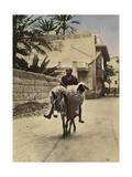 A Man and a Sheep Both Ride a Donkey Through the Streets Stampa fotografica di Eric Keast Burke