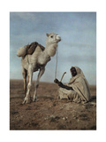 A Man Takes a Break with His White Camel Photographic Print by Franklin Price Knott