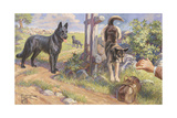 Groenendael and Malinois Dogs Work as Herders and Couriers Giclée-tryk af Edward Herbert Miner