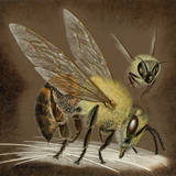 A Painting of an African Bee Injecting its Poison Giclée-tryk af Suzan Swain Firmage