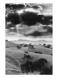 Los Olivo, California Prints