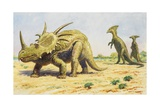 Both the Styracosaurus (Right) and the Parasaurolohus Were Herbivores Giclee Print by Charles R. Knight