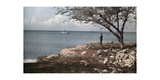 A Man Looks Out on the Water from the Abandoned City of Isabela Photographic Print by Jacob J. Gayer