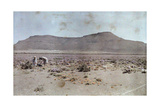 Women Pick Flowers in the Usually Barren Desert Photographic Print by Melville Chater