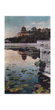 Painting of a Lily Lake with Chinese Architecture in the Background Fotografisk tryk af H. C. and J. H. and Deng White and Bao-Ling