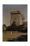 Visitors Admire the Blarney Castle from the Lawn Photographic Print by Clifton R. Adams