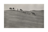 Men and their Horses Travel across a Desert Trail to Rainbow Bridge Photographic Print by George Dock