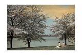 Two Women Sit by a Waterfront Framed by Cherry Blossoms Photographic Print by Clifton R. Adams
