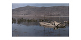 "Rush-Boats, known as ""Balsas,"" Bob on the Waters High in the Andes Photographic Print by Jacob J. Gayer"