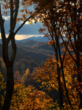 Fall Colors in the Blue Ridge Mountains Fotografisk tryk af Amy White and Al Petteway