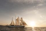 The Star Flyer Sailing Cruise Ship Underway at Sunset Lámina fotográfica por Sergio Pitamitz