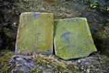 Lichen Encrusted Stone Tablets at a Buddhist Monastery Featuring Engravings of Two Bodhisattvas Photographic Print by Jason Edwards