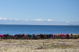 Laundry Hangs on a Wall on Isla Del Sol Along the Edge of Lake Titicaca Photographic Print by Alex Saberi