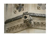 Detail Shot of a Gargoyle at the National Cathedral in Washington, Dc Photographic Print by Joel Sartore