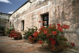 Flowers Grow in Pots Outside of a Hotel Photographic Print by Macduff Everton