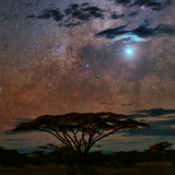 The Milky Way and Planet Venus over an Acacia Tree in the Evening Photographic Print by Babak Tafreshi
