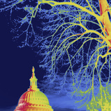Thermal Image of the United States Capitol Photographic Print by Tyrone Turner