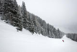A Skier at Vigo Di Fassa in the Italian Dolomites Skis Down a Piste Through a Forest Photographic Print by Alex Treadway
