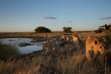 A Camera Trap Captures Researchers Documenting Lions in the African Serengeti Photographic Print by Michael Nichols
