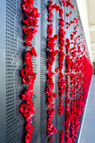 The Roll of Honour and the Names of Fallen Soldiers are Remembered with Bright Red Poppies Photographic Print by Jason Edwards