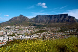 Table Mountain Looms Above the City of Cape Town Fotografisk tryk af Heather Perry