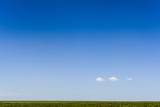 A Lonely Cloud Dwarfed by a Vast Blue Sky over the Savannah Grassland Horizon Photographic Print by Jason Edwards
