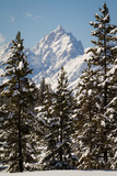 A Cold Winter Morning in the Teton Mountains, Wyoming Photographic Print by Greg Winston