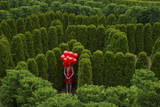 A Young Woman Stands with Balloons in the Garden Maze at Luray, Virginia Lámina fotográfica por Sartore, Joel