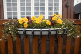 A Pot of Flowers Outside of a Restaurant in Husavik Photographic Print by Jill Schneider