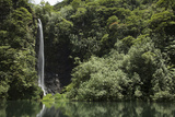 A Waterfall in the Papeno'O Valley Photographic Print by Andy Bardon