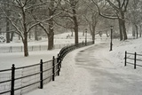 A Blizzard in Central Park Photographic Print by Kike Calvo