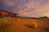 Tumbleweed and Sand Dunes in Monument Valley Navajo Tribal Park Photographic Print by Diane Cook Len Jenshel