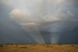 A Dark Stormy Sky with Crepuscular Rays over a Vast Savanna Photographic Print by Bob Smith