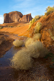 Tumbleweeds in a Wash Near Sand Springs in Monument Valley Navajo Tribal Park Photographic Print by Diane Cook Len Jenshel