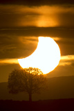 The Sun Being Eclipsed by the Moon During Sunset Photographic Print by Robbie George