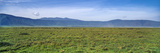 A Vast Short Grass Savannah Plain Surrounded by a Volcano Caldera Wall Photographic Print by Jason Edwards