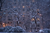 Manhattan Buildings and Trees Along Central Park During a Blizzard at Night Photographic Print by Kike Calvo