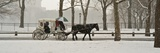 A Horse a Carriage in Central Park During a Blizzard Fotografisk tryk af Kike Calvo