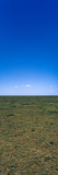 The Vast and Featureless Short Grass Savannah Plain Beneath a Clear Blue Sky Photographic Print by Jason Edwards