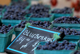 Bins of Organically Grown Maine Blueberries Displayed for Sale at the Maine Organic Farmers' Market Photographic Print by Robbie George