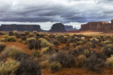 Tumbleweeds and Sheep Near Hunts Mesa in Monument Valley Navajo Tribal Park Photographic Print by Diane Cook Len Jenshel
