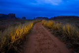 Tumbleweeds Line a Dirt Road in Monument Valley Navajo Tribal Park Photographic Print by Diane Cook Len Jenshel