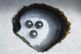 Tahitian Black Pearls on Rock Salt Photographic Print by Andy Bardon