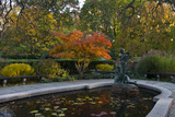A Water Lily Pond in an Autumn Landscape with Warm Sunlight Photographic Print by Diane Cook Len Jenshel