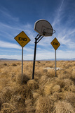 Tumbleweeds Pile Against Road Signs and a Basketball Hoop in a Vacant Field Photographic Print by Diane Cook Len Jenshel