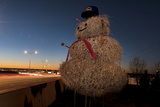 A Tumbleweed Snowman in New Mexico Rises Along Interstate 40 Photographic Print by Diane Cook Len Jenshel