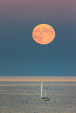 The Harvest Moon Rises over a Sailboat in Casco Bay Stampa fotografica di Robbie George