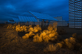 Headlights Illuminate Tumbleweeds Piled Up Against a Fence of Solar Panels Photographic Print by Diane Cook Len Jenshel