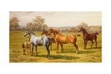 Horses and Foal in a Field Giclee Print by Charles Sillem Lidderdale